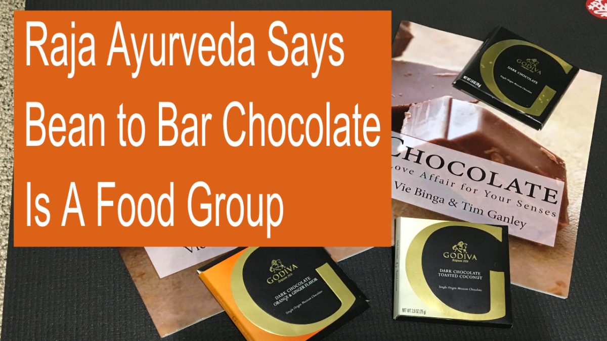 bean to bar chocolate ayurveda